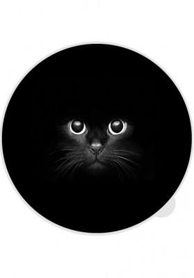 tabtag cat